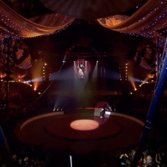 C'est quoi ce cirque